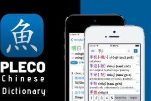 Pleco Chinese Dictionary for pc
