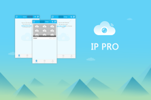 ip pro interface