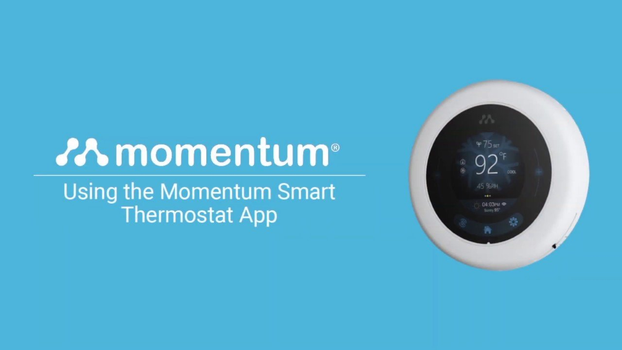 momentum for pc